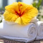 cleaning-services-towel-2608095_1280